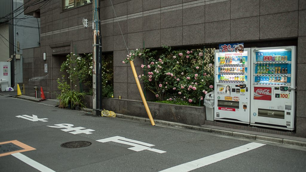 Japan lettering on the streets roses and vending machines